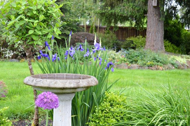Easy Garden Tips-designing your garden