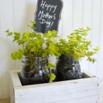 Make an easy reclaimed wood box with mason jar planters for a fun Mother's Day gift