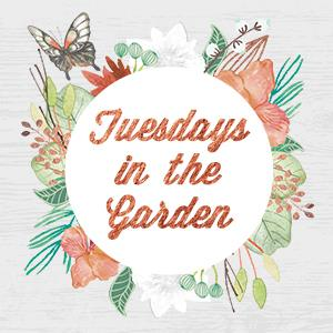 Tuesdays in the Garden