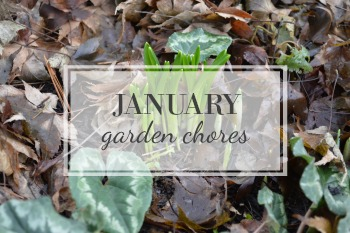 January Garden Chore Checklist