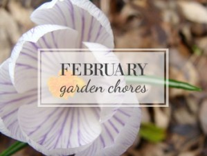 February Garden Task Checklist