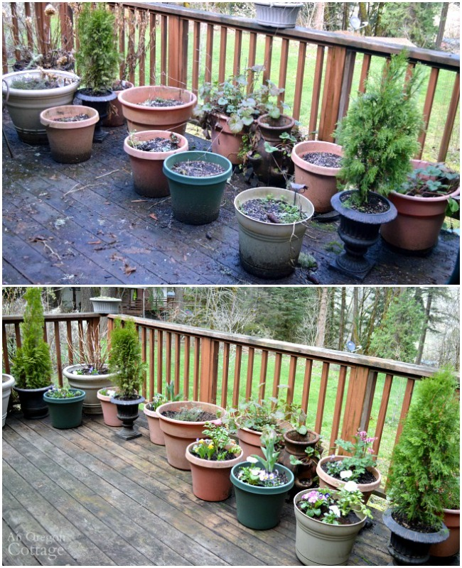 Ideas & Tips to Refresh Your Flower Pots for Spring- deck before and after