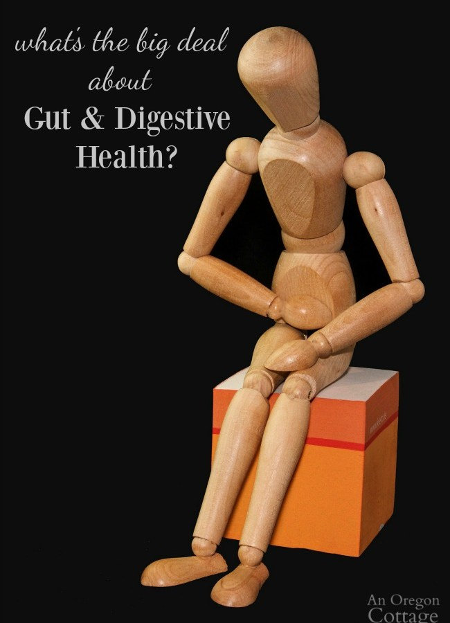 Why care about healthy gut & simple steps everyone can take for gut and digestive health