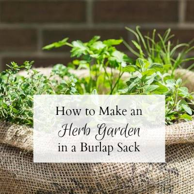 DIY herb garden in burlap sack at Hearth and Vine