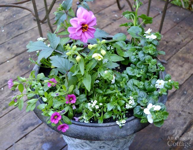 Simple Flower Pot Design for Sun