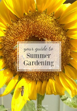 Your Guide to Summer Gardening Success Through the Heat