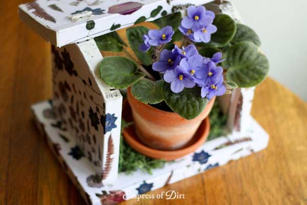 How to Make a Botanical Art Birdfeeder (using your own flowers!) @ Empress of Dirt