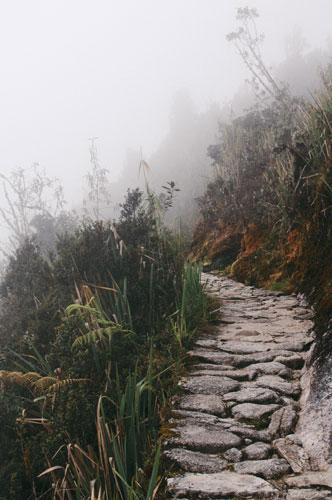 Path AFT or CBT-E