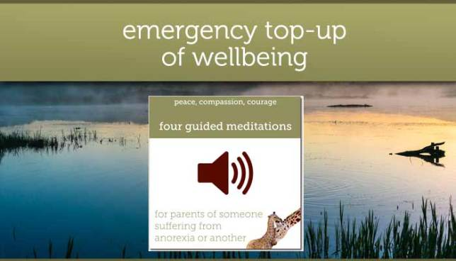 Guided meditations for parents of a child with anorexia/eating disorder