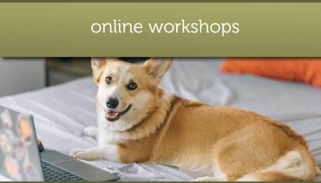 Online workshops eating disorders
