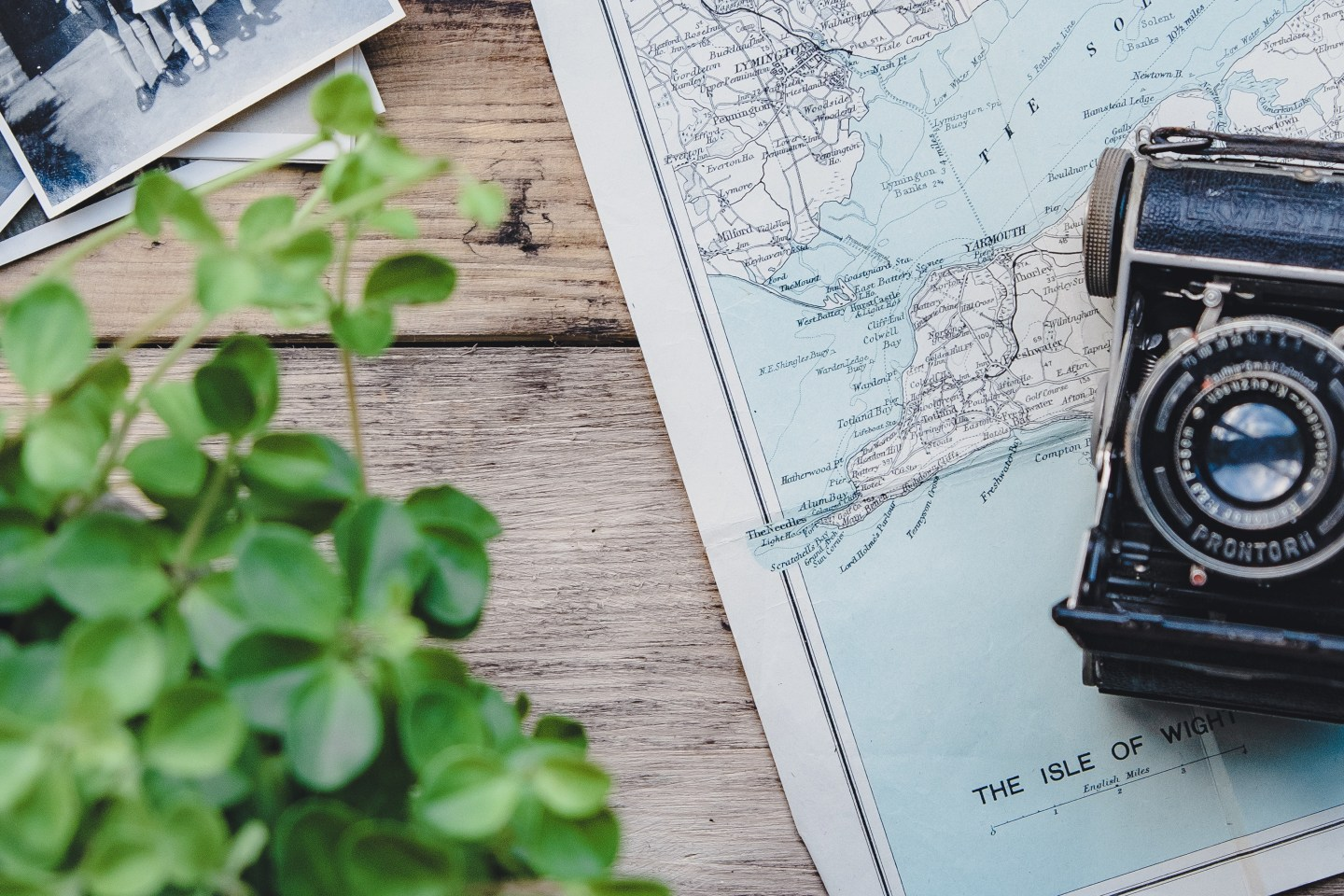 Canva - Camera, Vintage, Plant, Map, Flat Lay, Retro