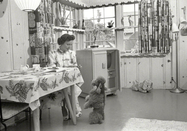 betty-white-at-home-with-her-dog-in-1952