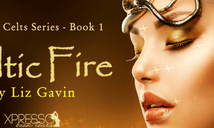 Celtic Fire by Liz Gavin Cover Reveal
