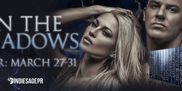 Into The Shadows Box Set Blog Tour