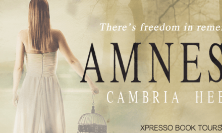 Amnesty by Cambria Hebert Cover Reveal