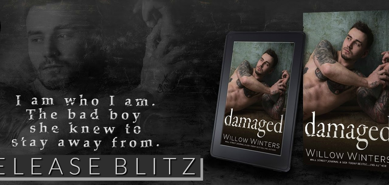 Damaged by Willow Winters Release Blitz