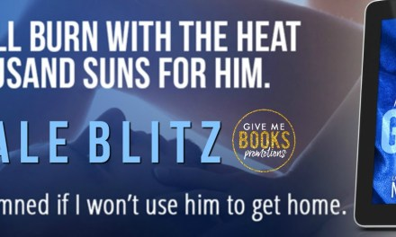 A Harmless Little Game by Meli Raine Sales Blitz