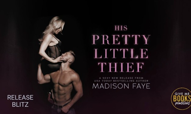 His Pretty Little Thief by Madison Faye Release Blitz