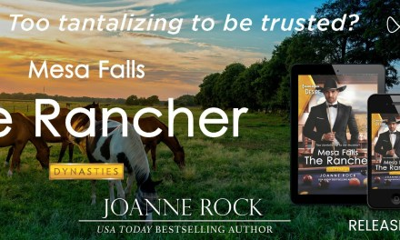 The Rancher by Joanne Rock Release Blitz