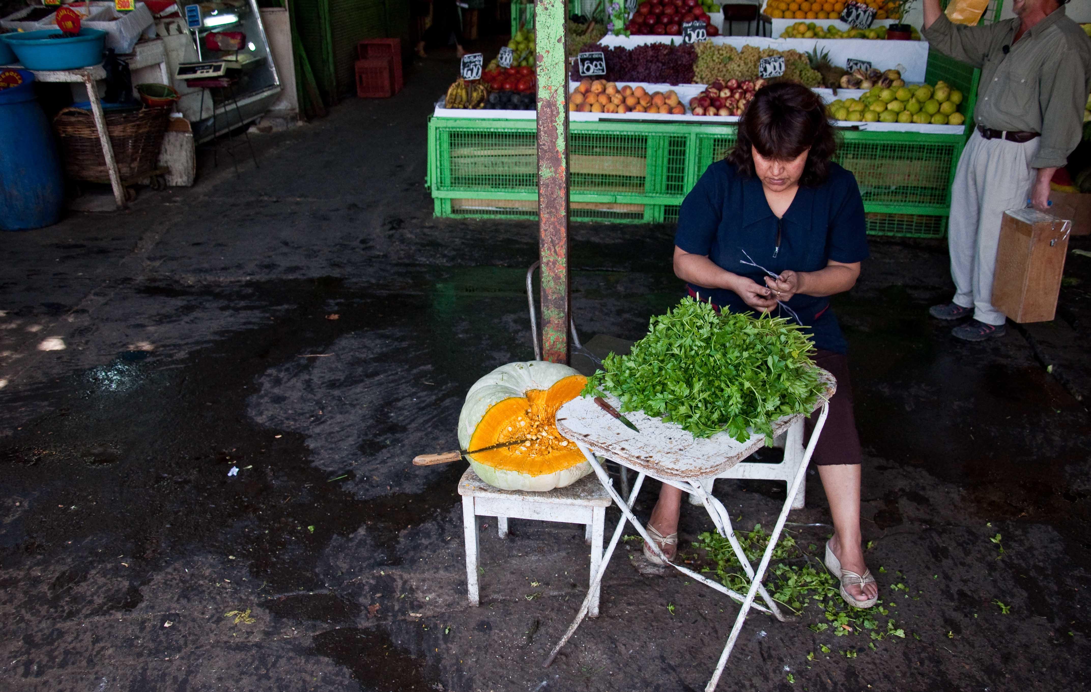 Bunching parsley at Mercado Vega Chica in Santiago