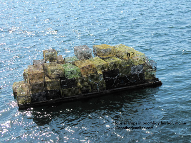 lobster traps in the water