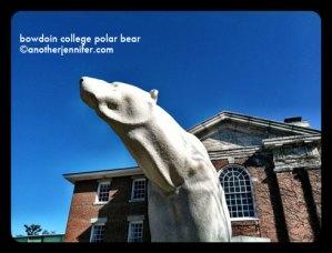 Wordless Wednesday: Bowdoin College Polar Bear