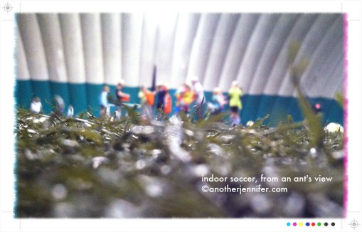 indoor soccer ant's view