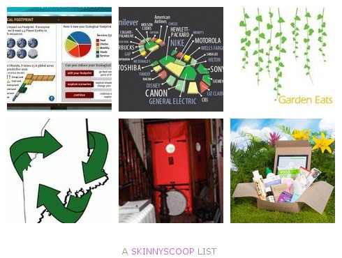 environmentally-friendly skinnyscoop list