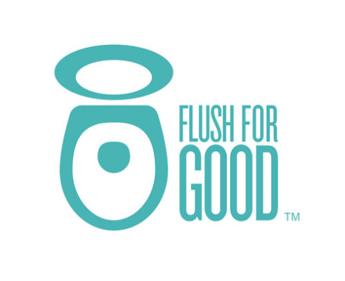 american standard flush for good