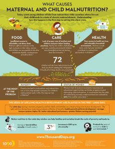 The Importance of Nutrition in the First 1,000 Days