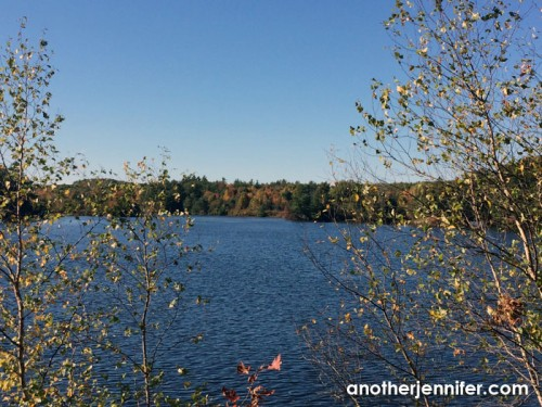 Wordless Wednesday: Fall Colors on the Androscoggin by Jennifer Iacovelli