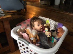 Baby in laundry basket