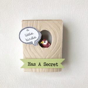 Pregnancy announcement box for parents