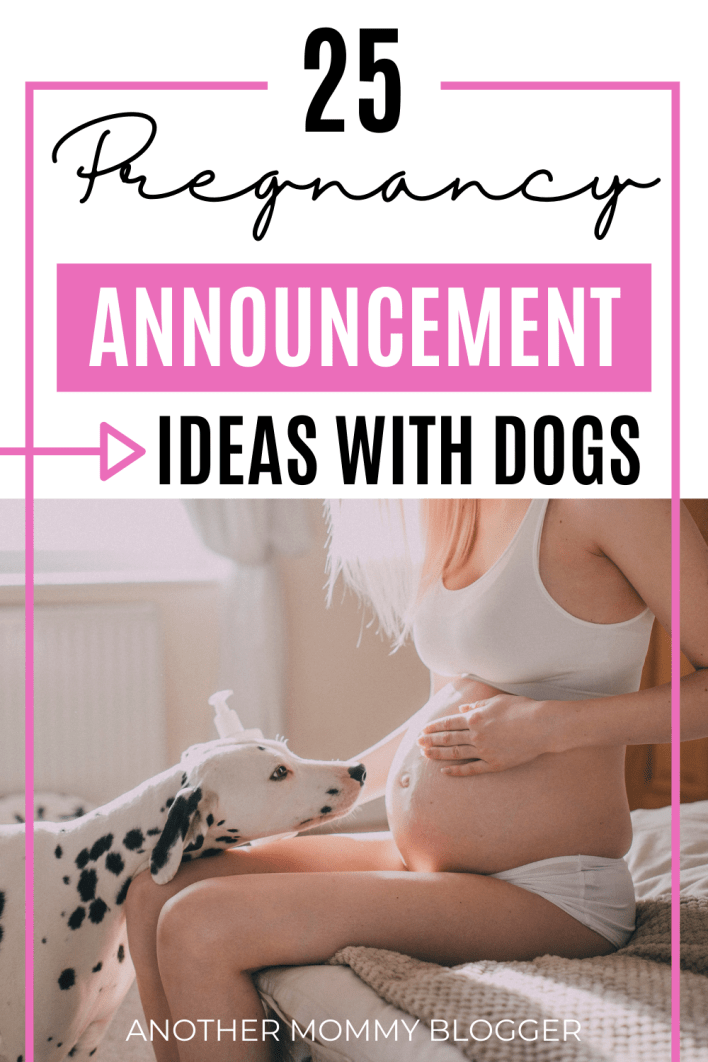 Looking for cute dog pregnancy announcement ideas? Here is a list of fun ways for your dog to announce your pregnancy to your friends and family.