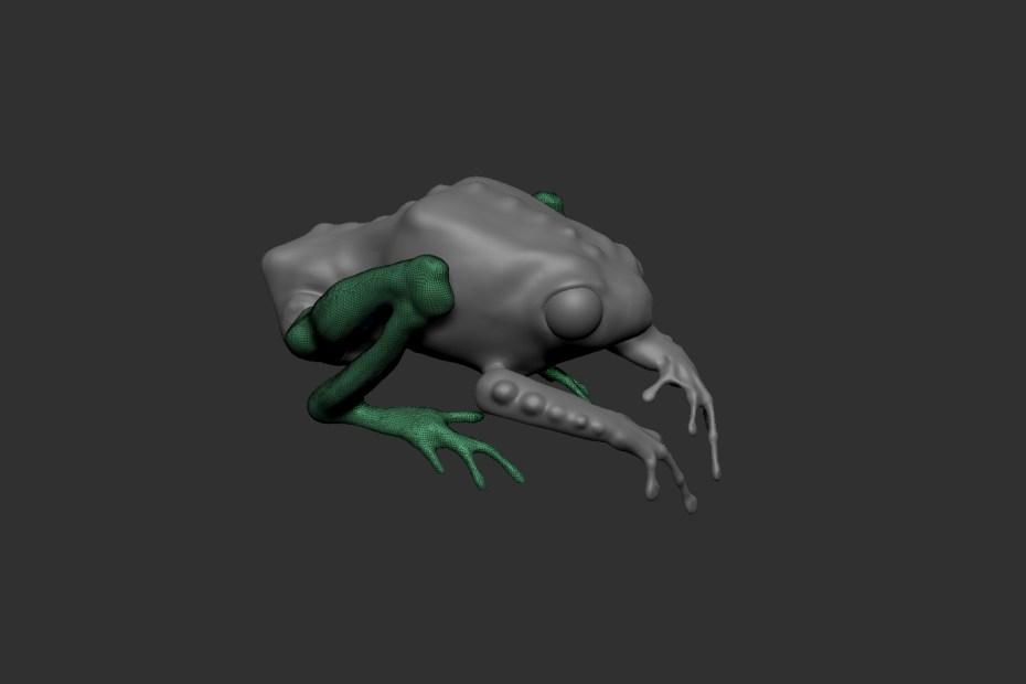 zbrush frog 1