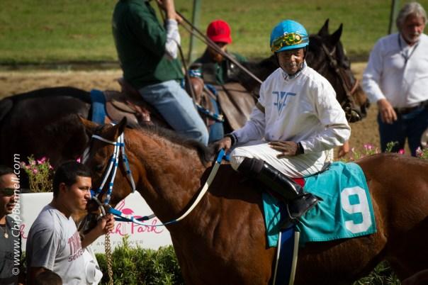 Hialeah Horses_BUNNELL-01052013-64