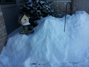 C'mon Pugsatawny Phil! We can't welcome spring if the mounds of snow bury our birdhouse!
