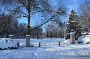 Frozen Walk Peabody Park