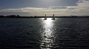 Recreational sailboats catch the waning sun just south of where the USS Midway is docked.