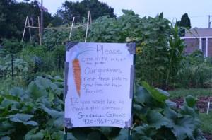 Community Garden 005