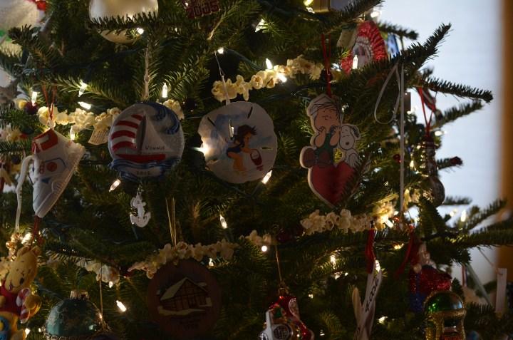 Christmas 2015 022