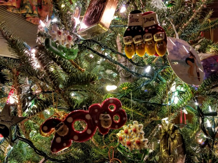 The Erb Park neighborhood section of our Christmas tree.