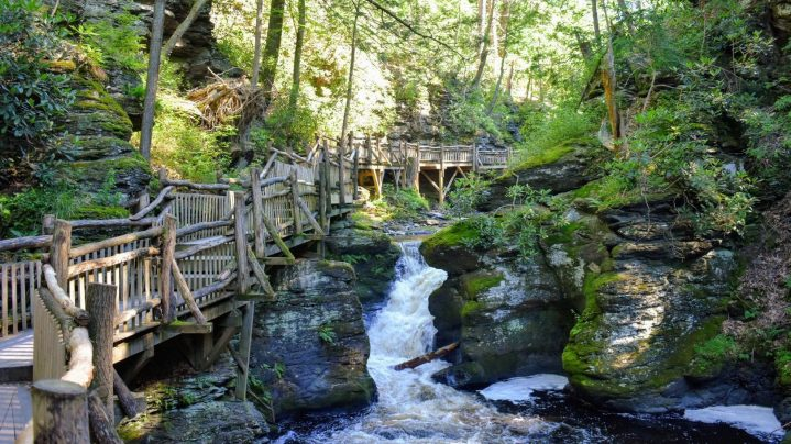 The Magic Tree House of Bushkill Falls