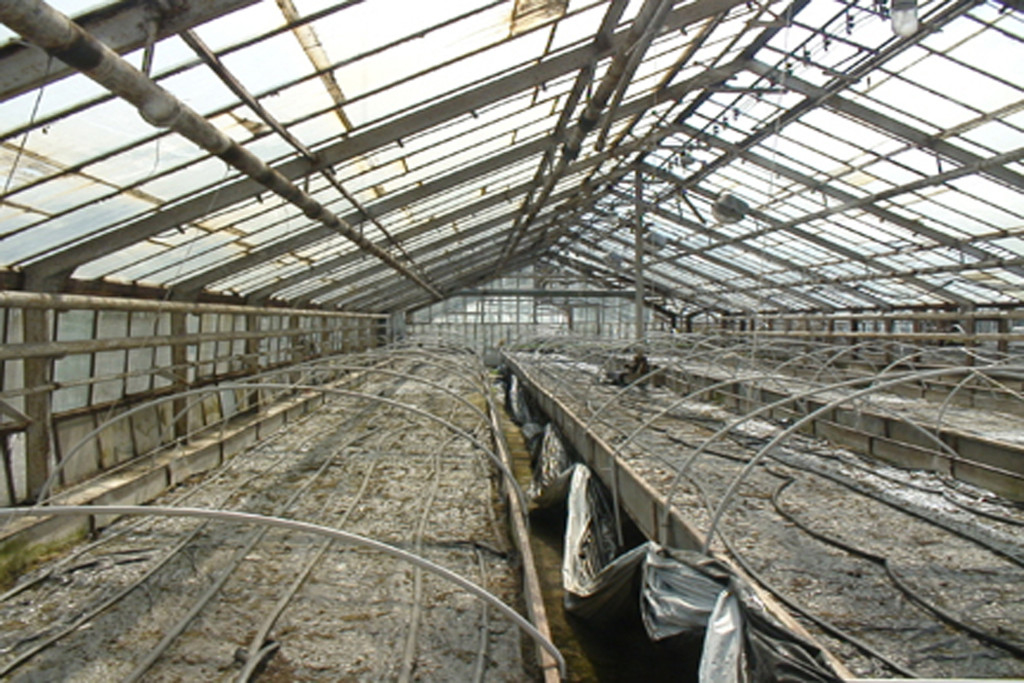 Greenhouses at Rajsko. © Another Space