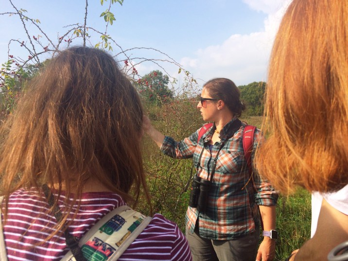 The Knepp resident ecologist giving us a tour of the property.