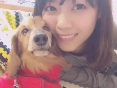 西野七瀬,むぎた,愛犬