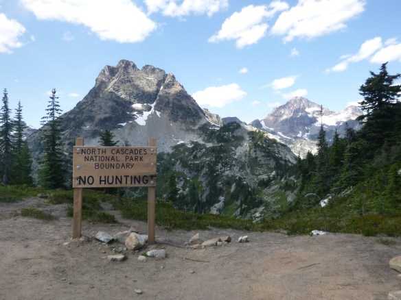 View of Corteo Peak from ridgeline, Maple Pass Trail, North Cascades National Park, WA