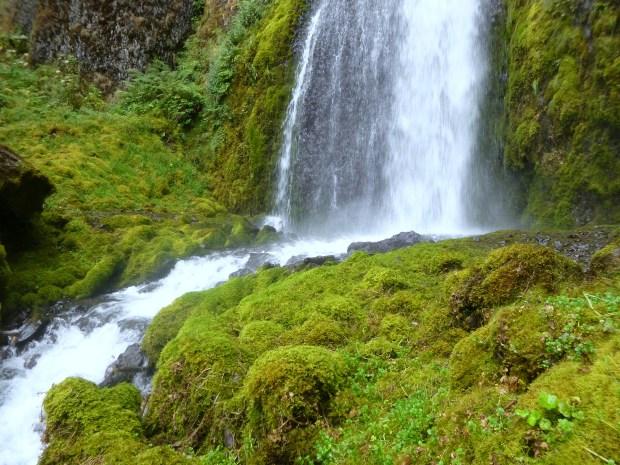 The lush and vibrant green moss of Wahkeena Falls, Oregon