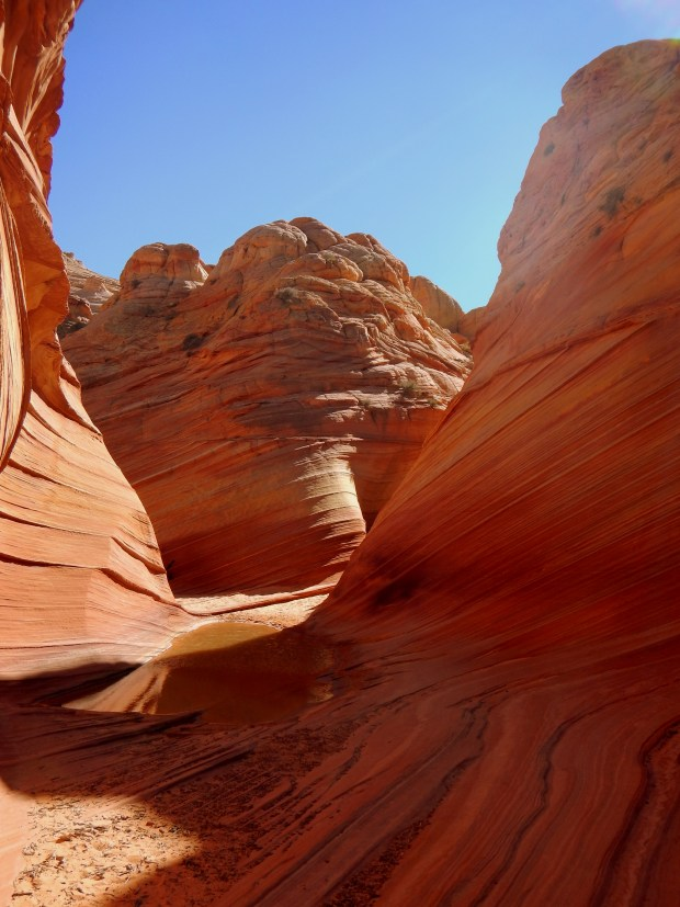 Near The Wave, Coyote Buttes, Grand Staircase-Escalante National Monument, Utah-Arizona border