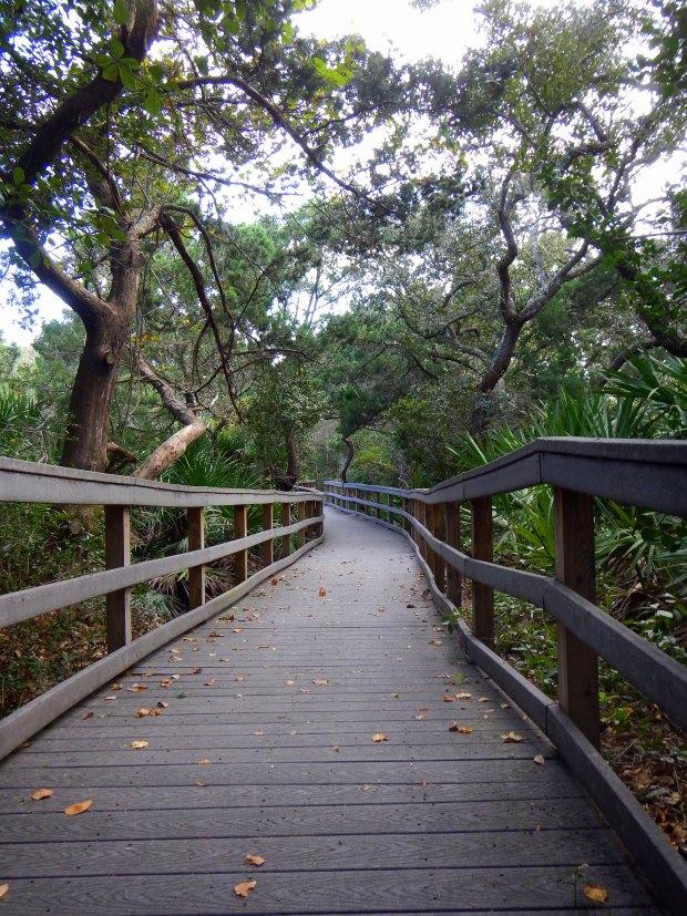 Nature trail at Fort Matanzas National Monument, Florida